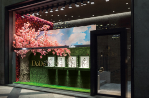 Dodo Natura Shop Windows